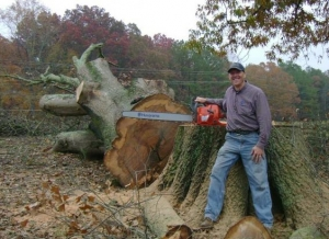 Stump Grinding in Suwanee GA - Chipper Tree Service - download-17