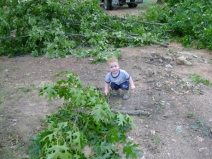 Professional Stump Grinding Services Near Norcross GA - Chipper LLC Tree Service - download-6