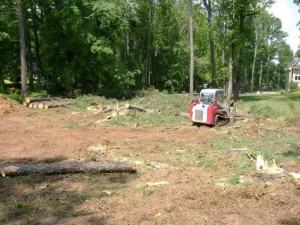 Expert Stump Grinding Services In Holly Springs GA - Chipper LLC Tree Service - download-7
