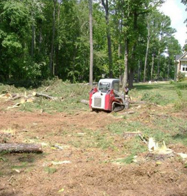Professional Underbrush & Forestry Mowing Cumming GA - Chipper LLC Tree Service - bursh2